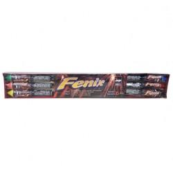 Fenix (Pakuotėje 6 raketos)